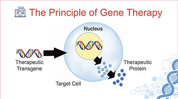 Getting to Know Gene Therapy: Terminology and Concepts